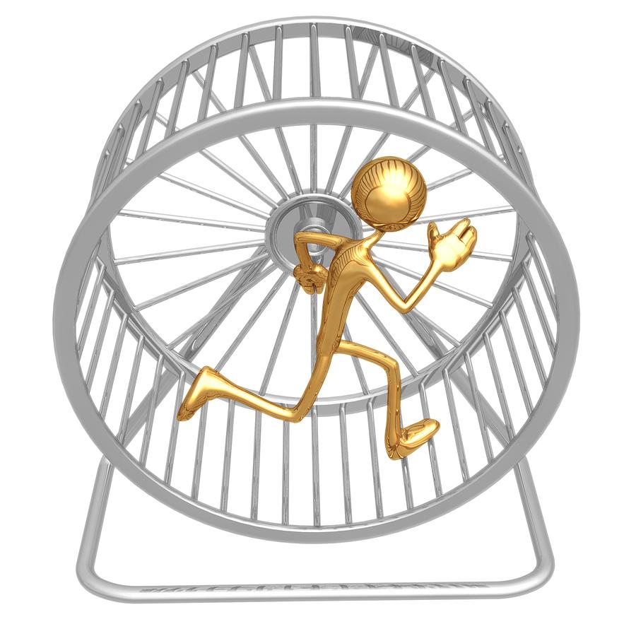bigstock-Hamster-Wheel-Runner-1522554.jp